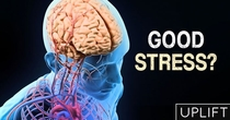 Eustress: Meeting the Positive Side of Stress
