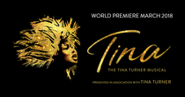 Tina: The Musical
