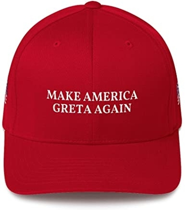 This Is Why I Am Not Broke Make America Greta Again Cap