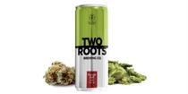 "People recommend ""Two Roots Brewing's non-alcoholic, THC-, CBD-infused beer explained"""
