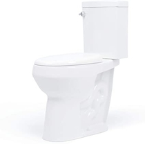 """People recommend """"20 inch Extra Tall Toilet. Convenient Height bowl taller than ADA Comfort Height. Dual flush, Metal handle, Slow-close seat -"""""""