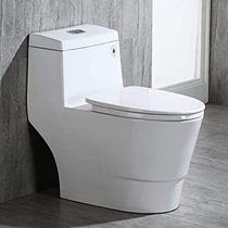 """People recommend """"WOODBRIDGE T-0001, Dual Flush Elongated One Piece Toilet with Soft Closing Seat, Comfort Height, Water Sense, High-Efficiency, Rectangle Button B-0940 Pure White """""""