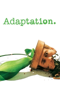 Movies from Matthew McConaughey