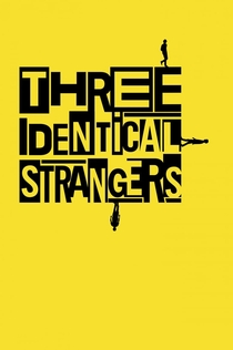 Three Identical Strangers - 2018